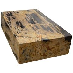 Andrianna Shamaris Petrified Wood Slab Coffee Table