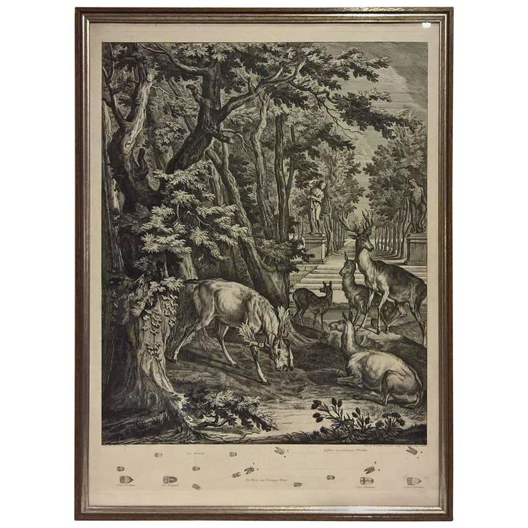 18th Century Black Forest Copperplate Johann Elias Ridinger with Hunting Scene 1