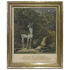 18th Century Black Forest Copperplate Johann Elias Ridinger With Hunting Scene