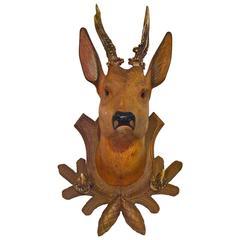 19th Century Black Forest  Deer Head