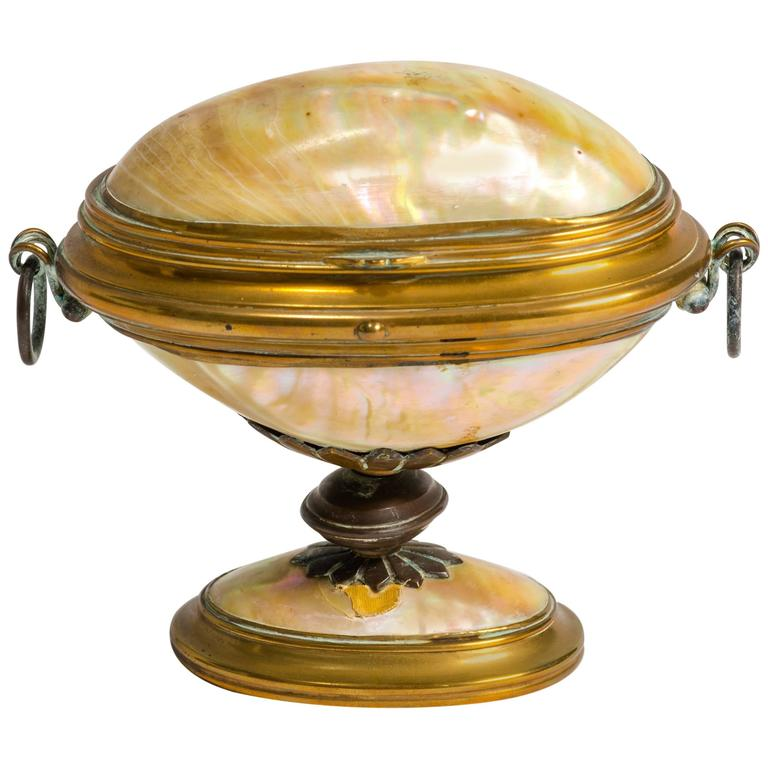 19th Century English Shell Box