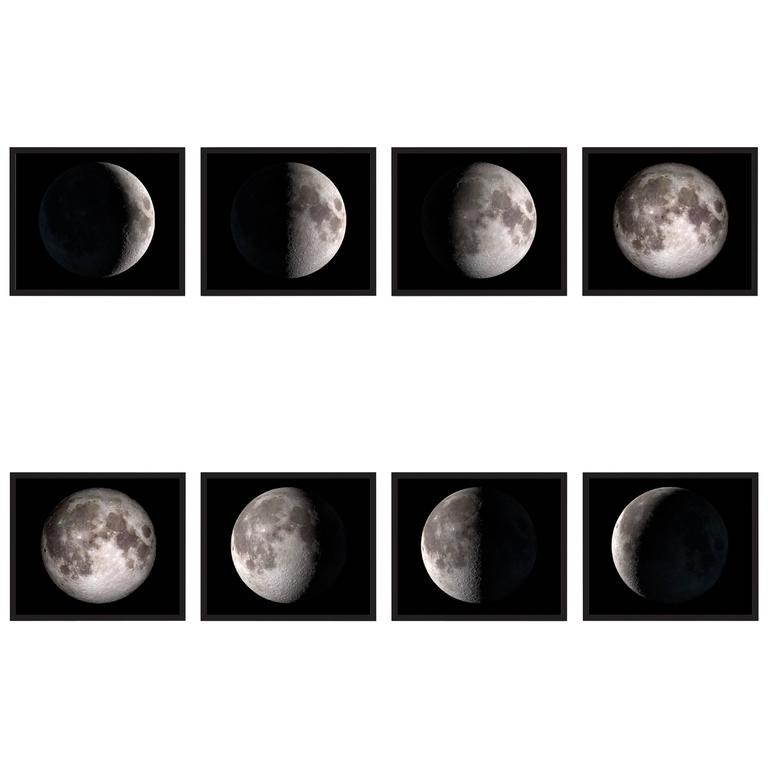 Phases of the Moon Prints 1