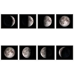 Phases of the Moon Prints