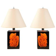 Pair of Acrylic and Coral Lamps, Spain, 2015