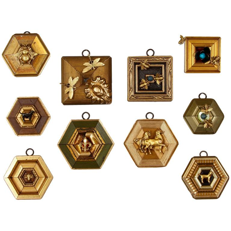 "Series of ""Museum Bees"" Frames 1"