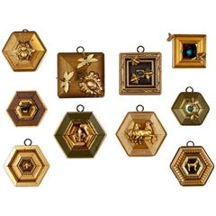 "Series of ""Museum Bees"" Frames"