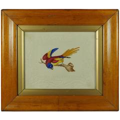 19th Century Dobbs Watercolor Parrot Embossed Paper Bird's-Eye Maple Frame