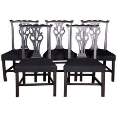 Five Beautiful Chairs in Regency Style
