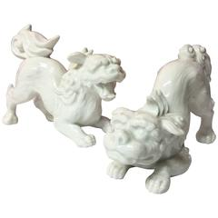 Rare Pair of White Porcelain Blanc De Chine Foo Shi Dogs by Fitz and Floyd