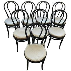 Eight Thonet Chairs nr 18  1904 Stamped Blackened Beech