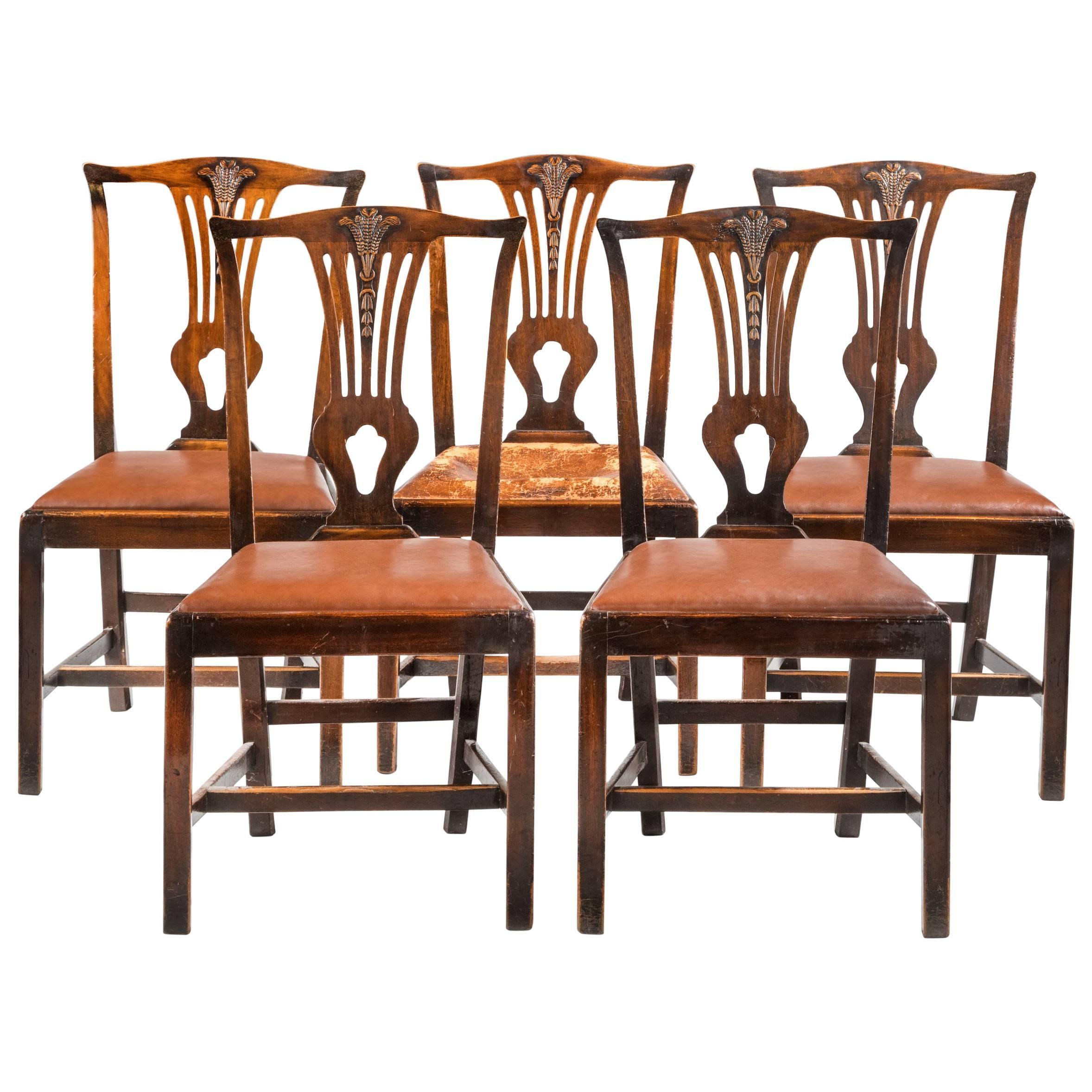 Set of Five George III Mahogany Dining Chairs