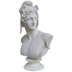 Marble Bust of Perseus
