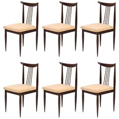 Giuseppe Scapinelli 1960s set of six dining chairs in Jacaranda and Fabric