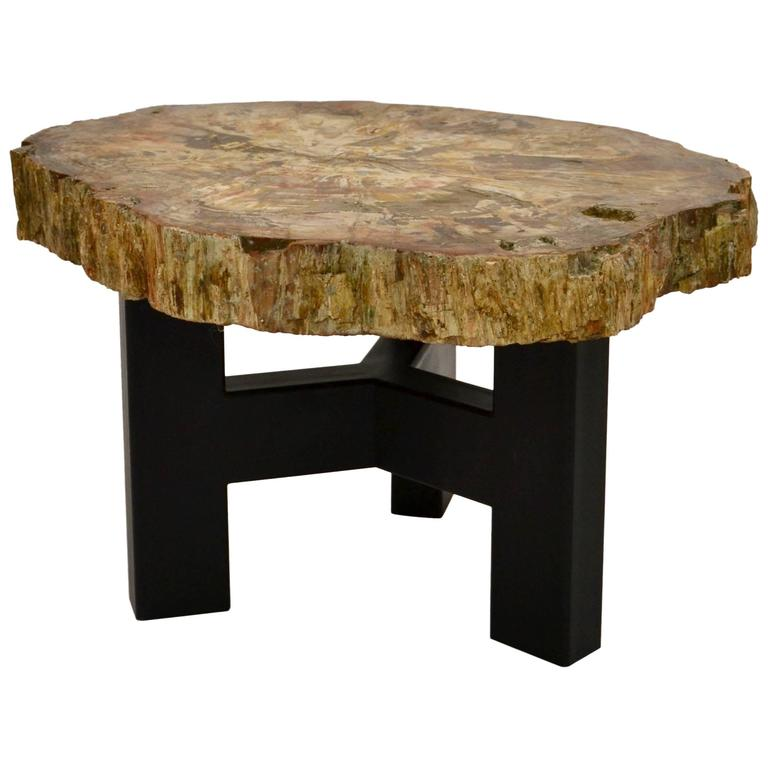Ado Chale Petrified Wood Table For Sale
