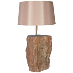 Contemporary Brown Petrified Wood Lamp