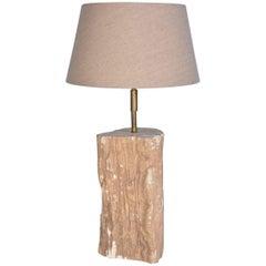 Organic Petrified Wood Lamp