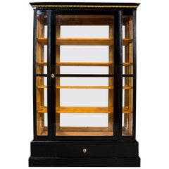 19th Century Empire Display Cabinet from Austria, Shellac polish, Ebonized