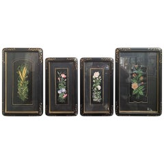 Set of Four Framed Botanical Prints, 19th Century