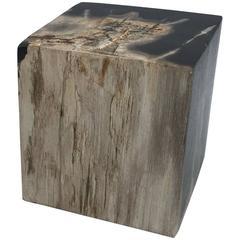 1950s Petrified Wood Cube Objet