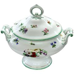 Continental Hand-Painted Porcelain Soup Tureen with Botanicals and Insects