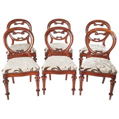 Superb Set of Six Mahogany Balloon Back Dining Chairs