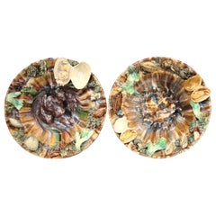 Pair of Early 20th Century Ceramic Barbotine Wall Hanging Plates with Seashells