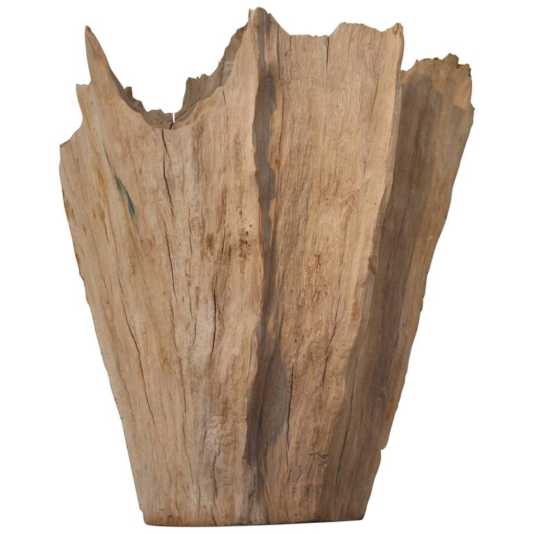 Organic Driftwood as Sculpture