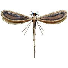 Jacques Duval Brasseur Dragonfly Sconce, 1970