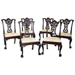 Early 20th Century Set of Six Mahogany Ribbon Back Chairs in Chippendale Style