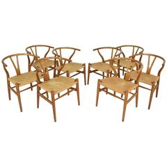 Set of Eight Hans Wegner CH-24 Wishbone Chairs for Carl Hansen