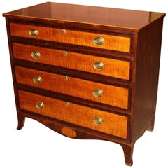 Federal New England Hepplewhite Chest with Tiger Maple Drawer Fronts