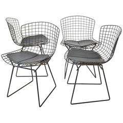 Set of Four Original Wire Dining Chairs by Harry Bertioa for Knoll, circa 1960