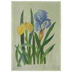 Naive Painting of Flowers, English, circa 1910