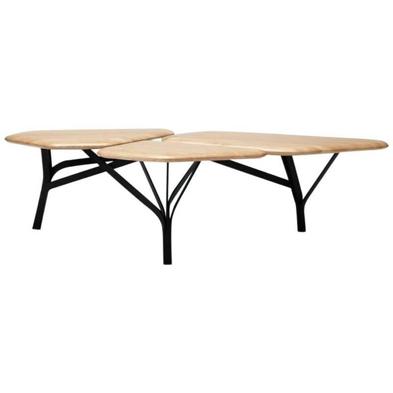 Borghese Coffee Table, Oak top and black structure