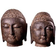 Male Shakyamuni Stones Carved Buddha Heads