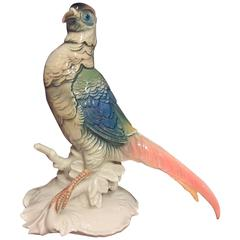 Early 20th Century German Porcelain Pheasant Bird Figure from Ens Porcelain