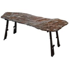 Polished Orthoceras Fossil Bench