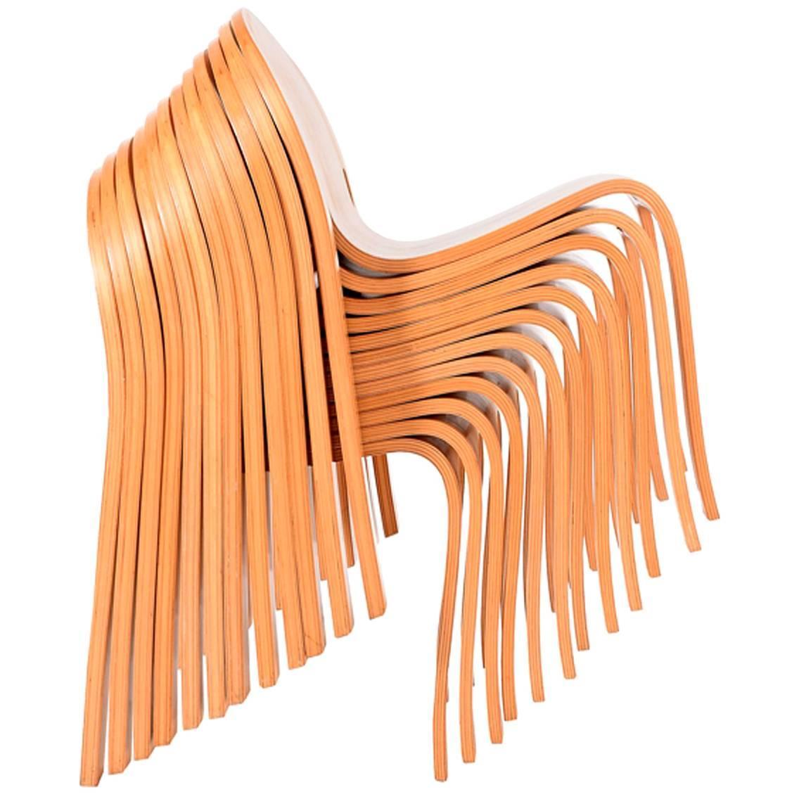 Great Set Of Twelve Bodyform Chairs By Peter Danko 1