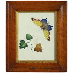 Mid-19th Century Watercolor of a Butterfly and Leaves