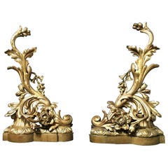 Pair of 19th Century Bronze Andirons