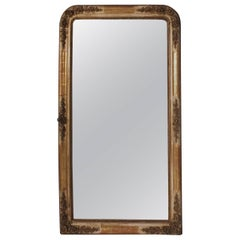 French Louis Philippe Style Carved Frame Wall Mirror