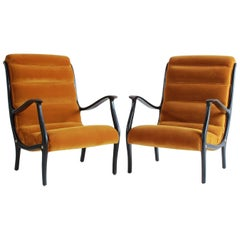 Pair of Ebonized Open Framed Armchairs Upholstered in Gold Velvet
