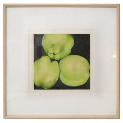 Donald Sultan Print 'Quince' Signed and Numbered 36/100, September 7, 1988
