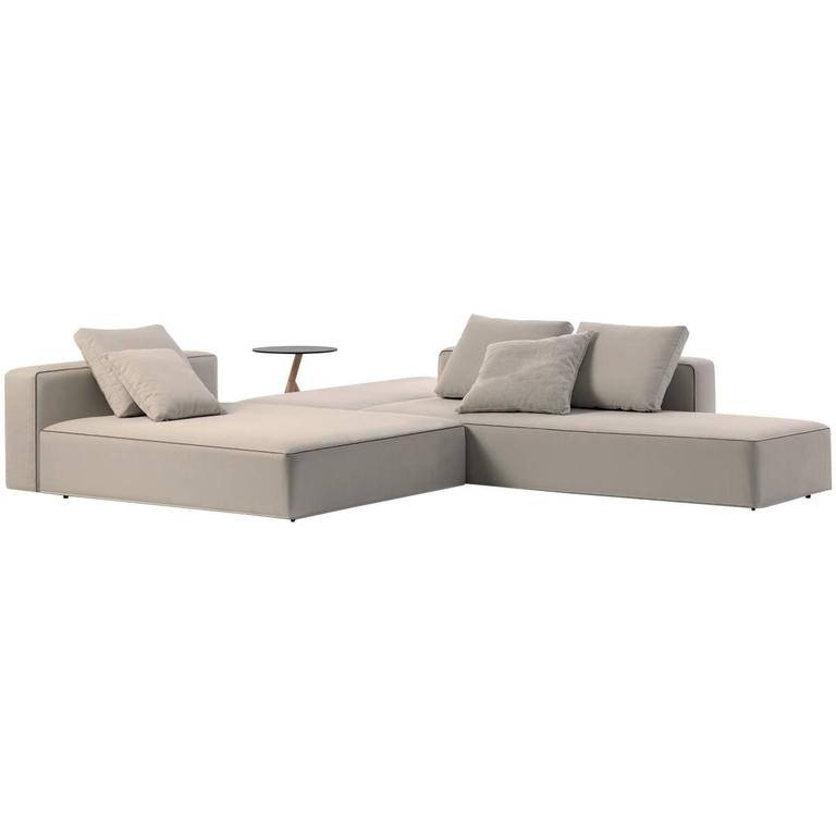Roda Dandy Sofa for Outdoor or Indoor Use by Rodolfo Dordoni For Sale