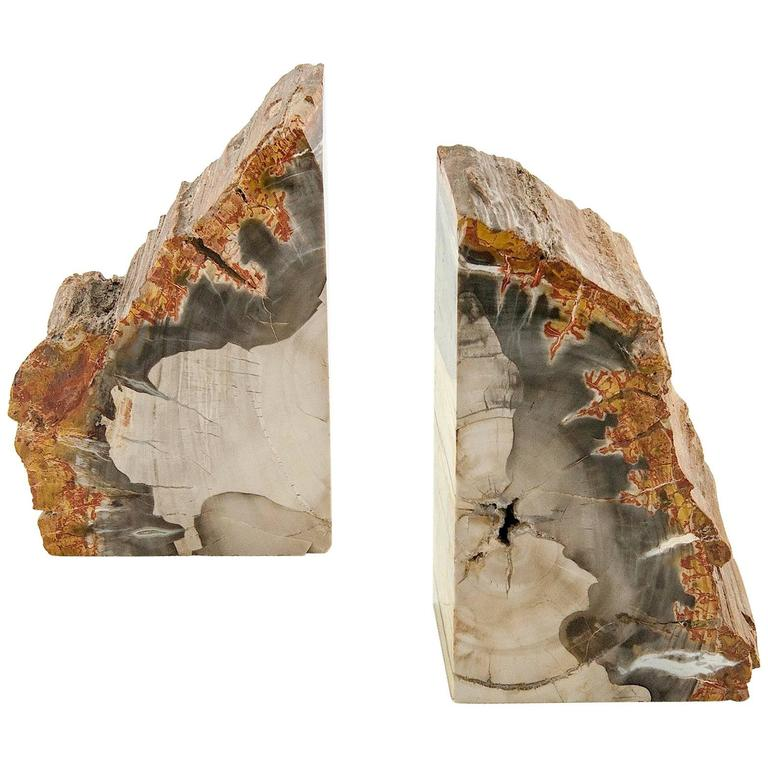 Exceptional Pair of Petrified Wood Bookends For Sale