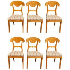 Biedermeier Set of Six Antique Swedish Flame Golden Birch Dining Chairs Honey