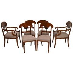 Six Antique Swedish Satin Birch Biedermeier Dining Chairs