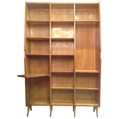 Vintage Italian Bookcase in Style of Ico Parisi, 1950