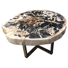 Petrified Wood Table Black and White Chrome Base