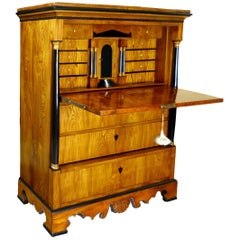 Secretaire a Abattant Biedermeier 19th Century Swedish Elm Karl Johan Period